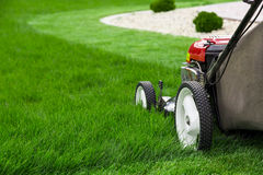 lawn mower garden cutting